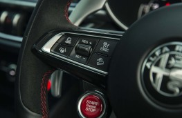 Alfa Romeo Stelvio Quadrifoglio, 2020, steering wheel