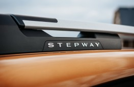 Dacia Sandero Stepway, 2021, roof rail, badge