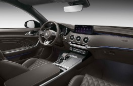 Kia Stinger, 2020, interior