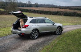 Subaru Outback, with dog