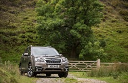 Subaru Outback, front