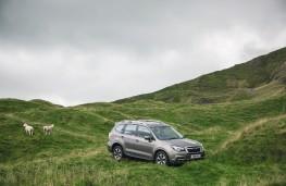 Subaru Forester, 2016, off road
