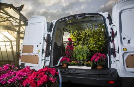 Ford Transit Connect, loaded