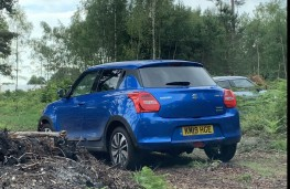 Suzuki Swift Allgrip, rear