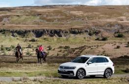 Volkswagen Tiguan, side, horses