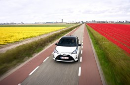 Toyota Yaris, action with flowers
