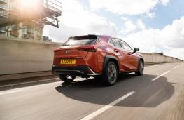 Lexus UX, 2020, rear, action