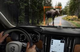 Volvo V90, 2016, large animal detection