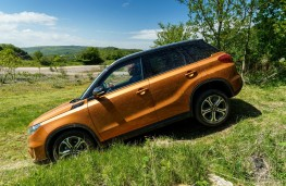 Suzuki Vitara, off road, descent