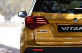 Suzuki Vitara, 2019, rear, detail