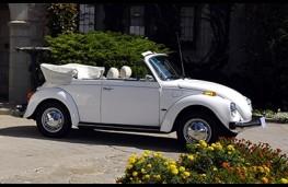 Volkswagen Beetle Cabriolet profile