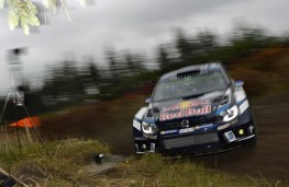 Volkswagen Polo R WRC, Rally Great Britain, 2016, action