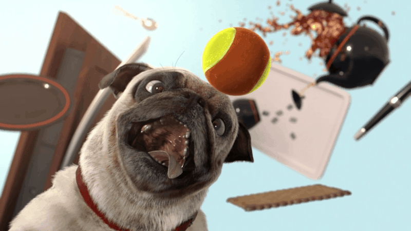 Which animation film is inspired by classic slapstick comedy and homemade videos of pets?