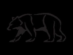 Europe S Big 5 Autumn Bears And Iberian Wolf Den Watching
