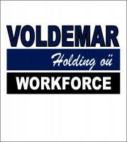 Voldemar Holding OÜ