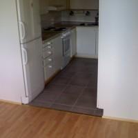 Pulkkisen siivous ja talonmiespalvelu - piipari3.jpg