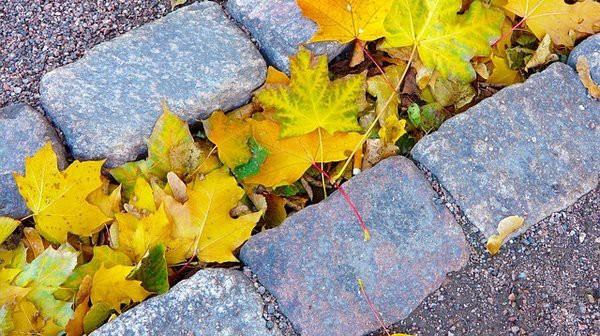 Kivetys Vantaalla