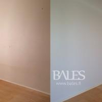Bales Group Oy - seinien_maalaus.png