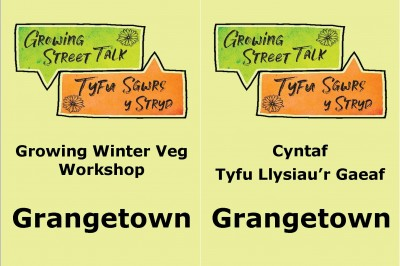 Grangetown Growing Winter Veg Workshop