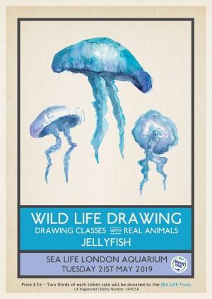 Wild Life Drawing: Jellyfish