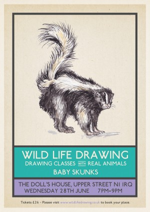Wild Life Drawing: Baby Skunks