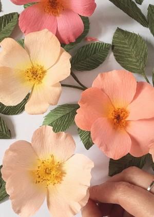 Paper Wild Rose Workshop