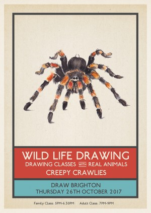 Wild Life Drawing: Halloween Special – Creepy Crawlies