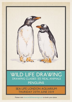 Wild Life Drawing: Penguins
