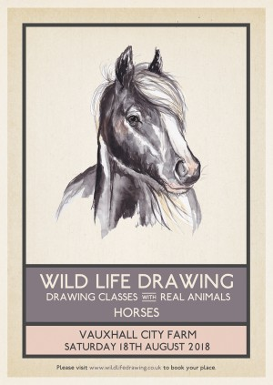 Wild Life Drawing: Horses