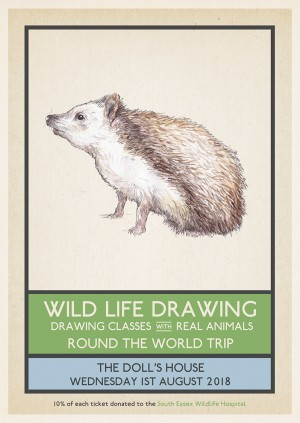 Wild Life Drawing: Round the World Trip
