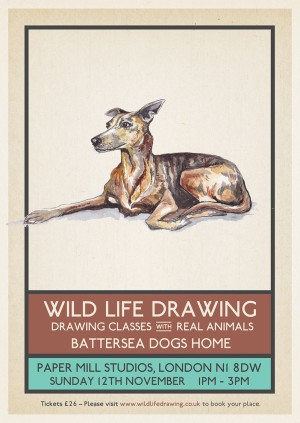 Wild Life Drawing: Battersea Dogs Home Charity Special