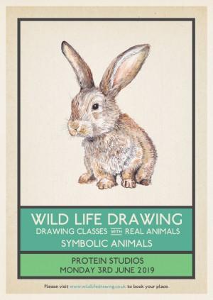 Wild Life Drawing: Symbolic Animals