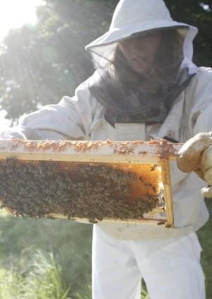 Therapi Honey Skincare Masterclass