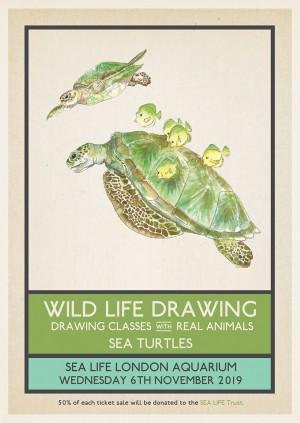 Wild Life Drawing: Sea Turtles