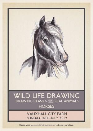 Wild Life Drawing: Horses