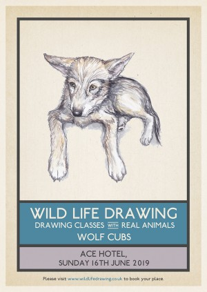 Wild Life Drawing: Wolf Cubs