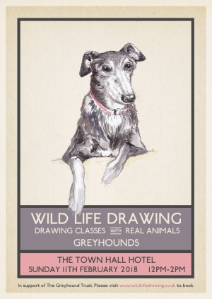 Wild Life Drawing: Greyhounds