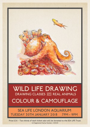 Wild Life Drawing: Colour & Camouflage – Watercolour Special
