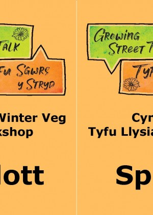 Splott Growing Winter Veg Workshop