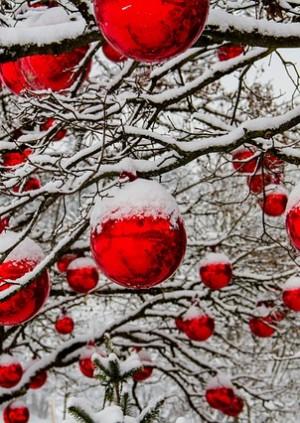 Christmas Lecture: Sissinghurst - Revitalising Vita