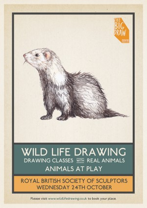 Wild Life Drawing x Big Draw: Animals at Play