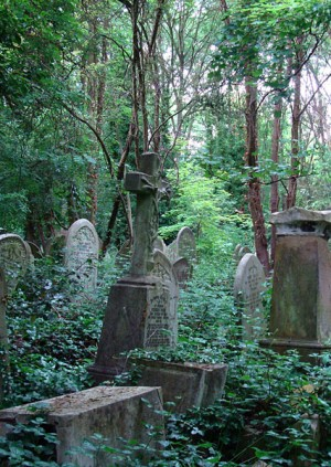 Walking Tour: Dark London: Gothic Evening Tour of Abney Park Cemetery
