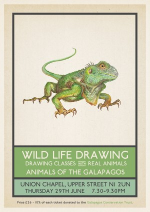 Wild Life Drawing: Animals of the Galapagos
