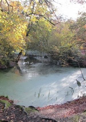 LPGT Winter Lecture 2: The Historic Significance of the 'Vegetative Layer' in London's Parks and Gardens