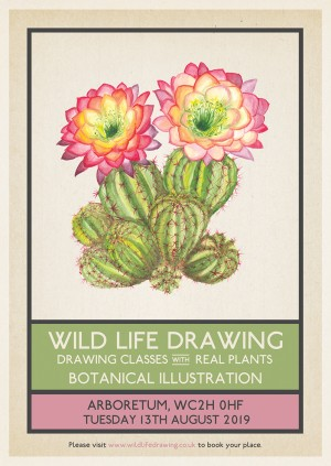 Wild Life Drawing: Botanical Illustration