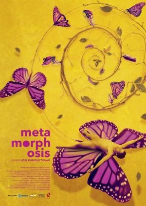 Metamorphosis - Competition - C76 Anonas