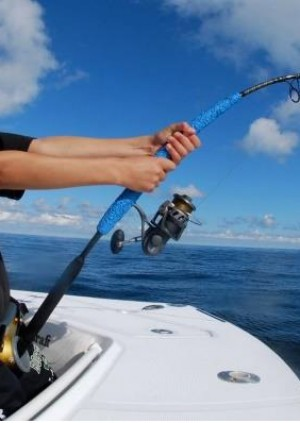 Coastal fishing trip / Viaje de pesca costera