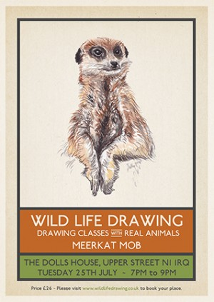 Wild Life Drawing: Meerkat Mob