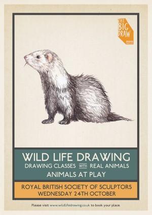 Wild Life Drawing x Big Draw: Animals at Play
