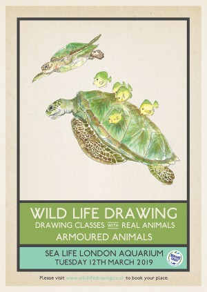 Wild Life Drawing: Armoured Animals